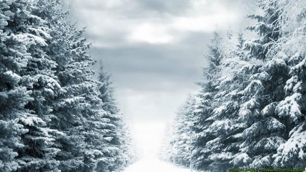 Heavy snow road