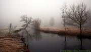 River under huge fog